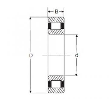 SIGMA MRJ 4.1/2 cylindrical roller bearings